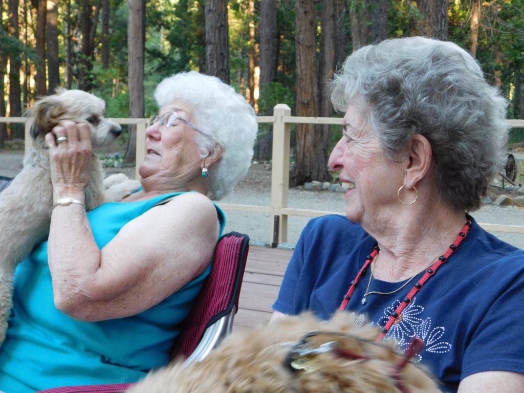Golden Coach - Pat & Dorothy in doggie-land